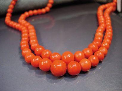 Collier deux rangs de perles de corail en...