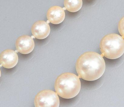 Collier de perles de culture en chute diamètre 5.5/9.3 mm, fermoir rectangulaire...