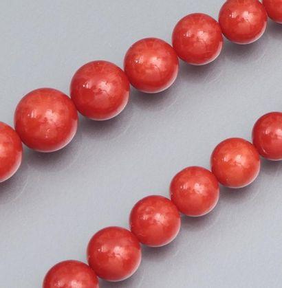 Fil de corail rouge composé de 97 billes de corail diamètre 4.9 à 10.2 mm. A en...