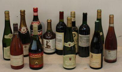 13 BOUT DE VINS ET ALCOOLS DIVERS, CHT CHALON,...