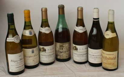 7 BOUT PULIGNY PERRIERE 91, 1 CHASSAGNE...