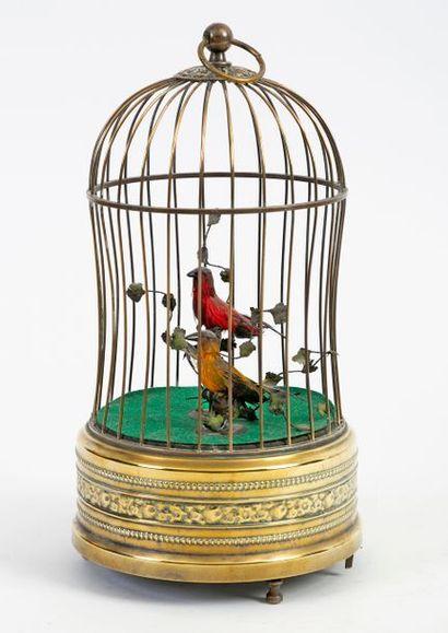 Cage à oiseaux en cuivre contenant deux oiseaux...