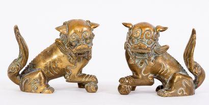 Chine, XIXe siècle Paire de Chiens de Fô...