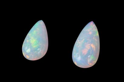 Batch of 2 white pear-shaped opals (drop)...