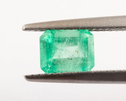 Probably Colombian emerald of 1.31 ct. size...