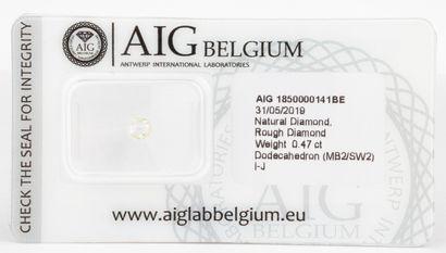 Diamant brut non monté en forme de dodécaèdre...