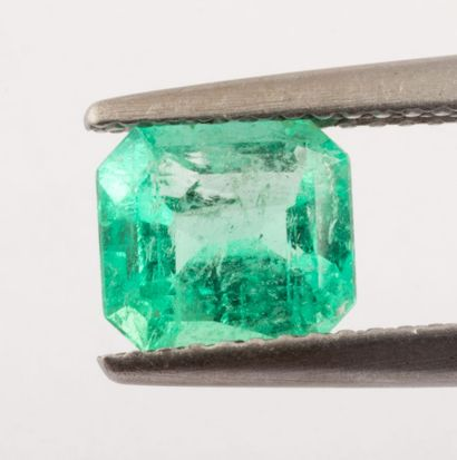 Probably Colombian 1.24 ct. Emerald size...