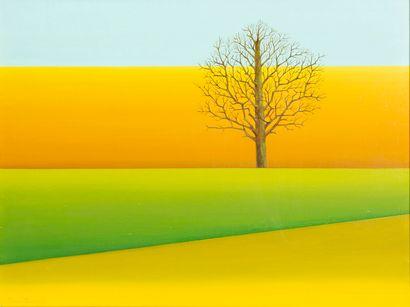 Pierre DEVOS (1917-1972) L'arbre , 1969 Huile...