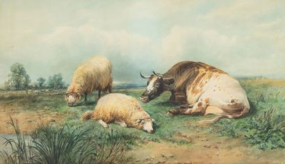 Thomas Sidney COOPER (1803-1902) Vache et...