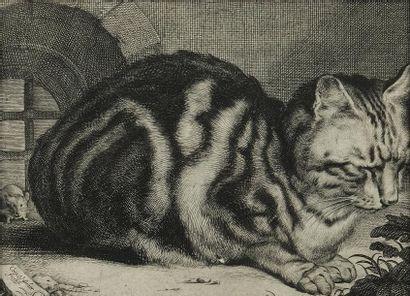 Cornelis VISSCHER (1619-1658)