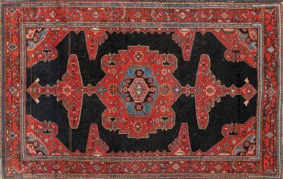 Tapis champ noir Carpet with black backg...
