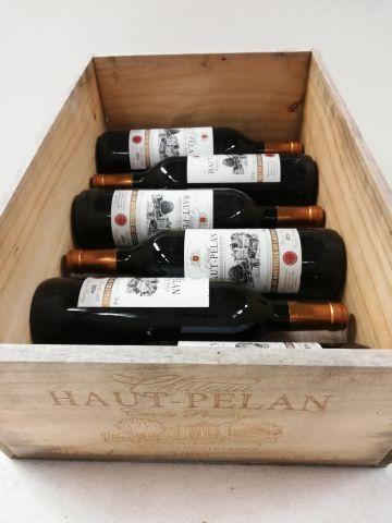 6 bouteilles de Château Haut-Pelan. 1994....