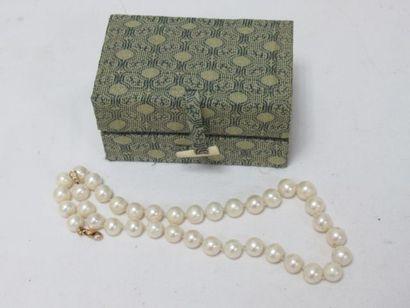 Collier en perles Akoya (?), fermoir en or...