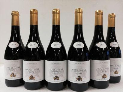 6 bouteilles de Bourgogne Rouge. 2017. Cépage...