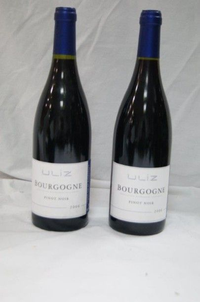 2 bouteilles de Bourgogne, Pinot Noir, Uliz,...