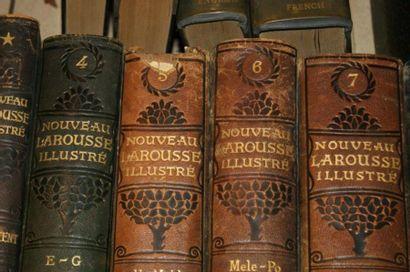Très fort Lot de dictionnaires LAROUSSE, on y joint deux albums d'illustrations...
