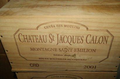 6 bouteilles de Montagne St-Emillion, Château...