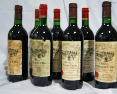 7 bouteilles de Montagne St Emilion, Château...