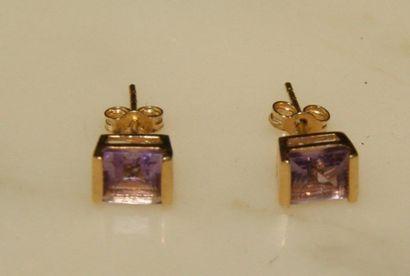 Paire de boutons d'oreilles en plaqué or,...