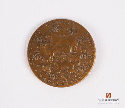 Souvenirs du Général WEYGAND (provenance...