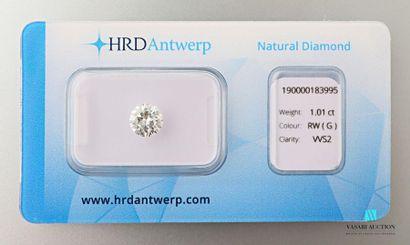 Diamant sur papier taille brillant rond de 1,01 carat, avec son certificat HRD du...