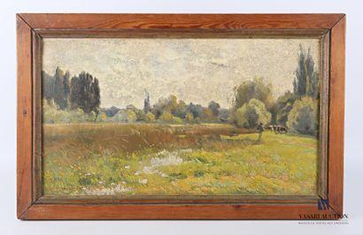 DOSQUE P.T. Raoul (1860-1937)  Marais de...