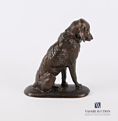Sujet en bronze représentant un épagneul assis  (petite fente)  Haut. : 17 cm -...