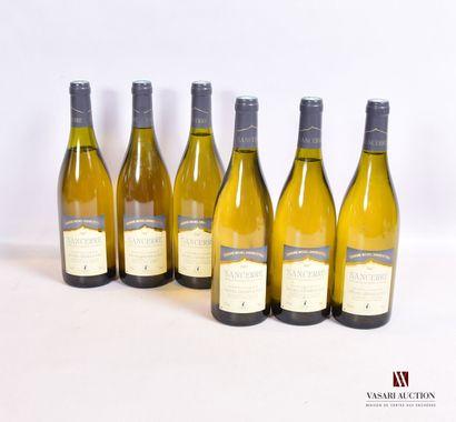 6 bouteillesSANCERRE mise Domaine Michel...