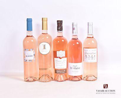 Lot de 5 bouteilles comprenant :  1 bouteilleROSÉ...