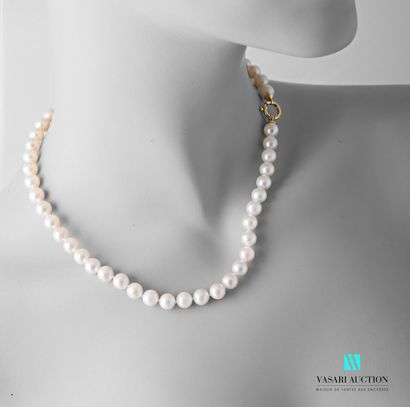 Collier de perles de ulture Akoya de 7,5/8...