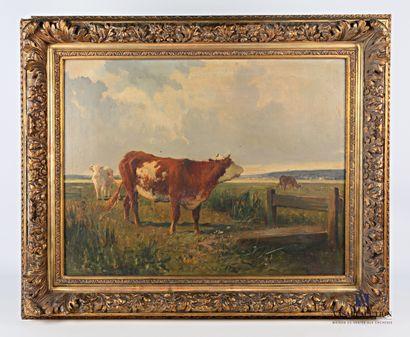 BRASSEUR (XIXème - XXème siècle)  Vache meuglant...