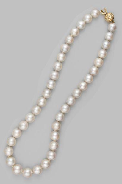 Collier de perles de culture en chute des...