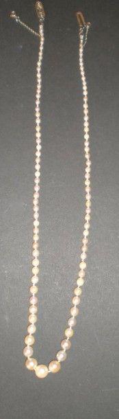 Collier de perles de culture, en chute, de...