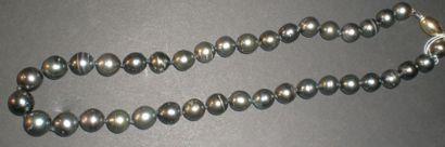 Collier en perles de Tahiti de 38 perles...