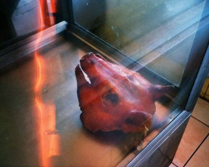 O'Dell Patrick  Decapited Pig  Photo papier...