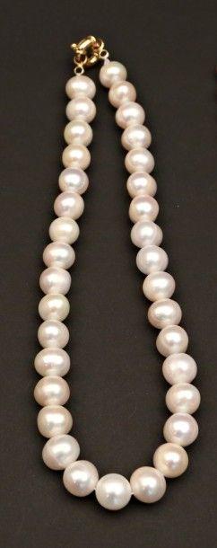 Collier choker de perles d'eau douce,  fermoir...