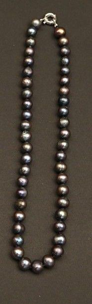 Collier choker de perles d'eau douce grise....