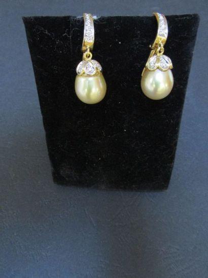Paire de pendants d'oreille en or jaune en...