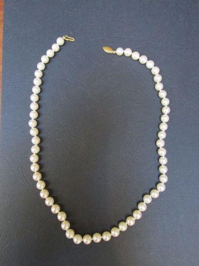 Collier de perles de cultures Akoya de 7-7,5...