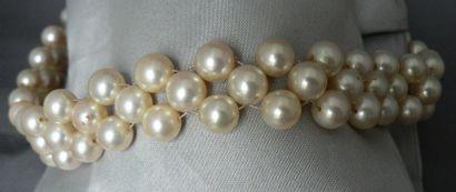 Collier de chien à tissage de perles de culture...