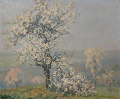 THIBÉSART Raymond (1874-1968) La branche...