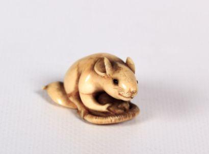 JAPON  Okimono en ivoire figurant une souris...