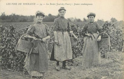 """7 CARTES POSTALES ALCOOL : Sélection Les Vins de Touraines. """"2cp-Les grands vins..."""