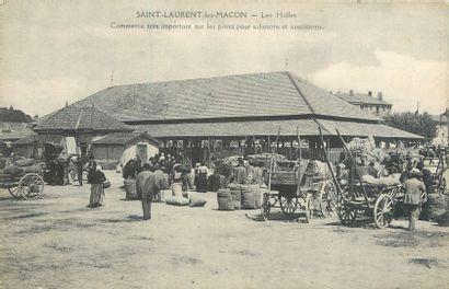 """11 CARTES POSTALES FOIRES & MARCHES : Province - Aux Bestiaux. """"Caraman-Jour de..."""