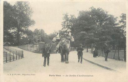 """16 CARTES POSTALES ANIMAUX : Divers. Dont"""" Exposition Canine Internationale de Paris..."""