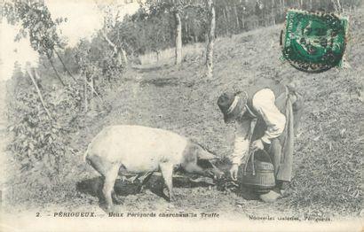 """14 CARTES POSTALES SCENES & TYPES : Divers. Dont"""" Forêt d'Amboise-Village de Bûcherons..."""