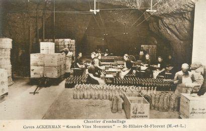 34 CARTES POSTALES ALCOOL : Le Mousseux et...