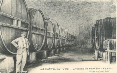 """10 CARTES POSTALES ALCOOL : Vins, Cidre et Eau de Vie. Dont"""" Château de la Lorie-Segré..."""