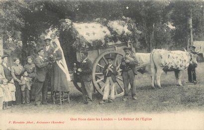 """11 CARTES POSTALES LES LANDES : Scènes & Types. """"Landes-Pêche de l'Alose dans l'Adour,..."""