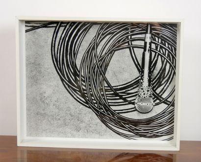 SLIMANE Hedi, d'après,  Micro  Photographie...